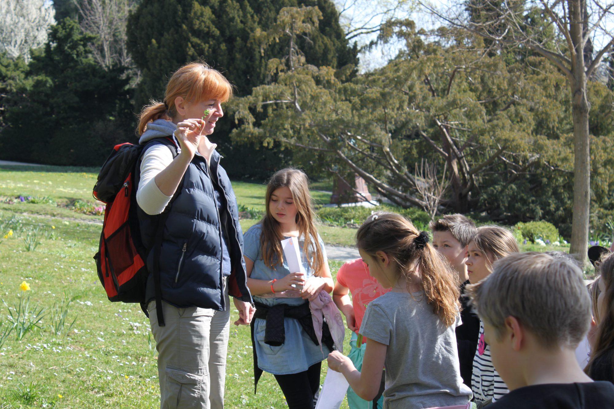 Kräuterspaziergang Volksschule