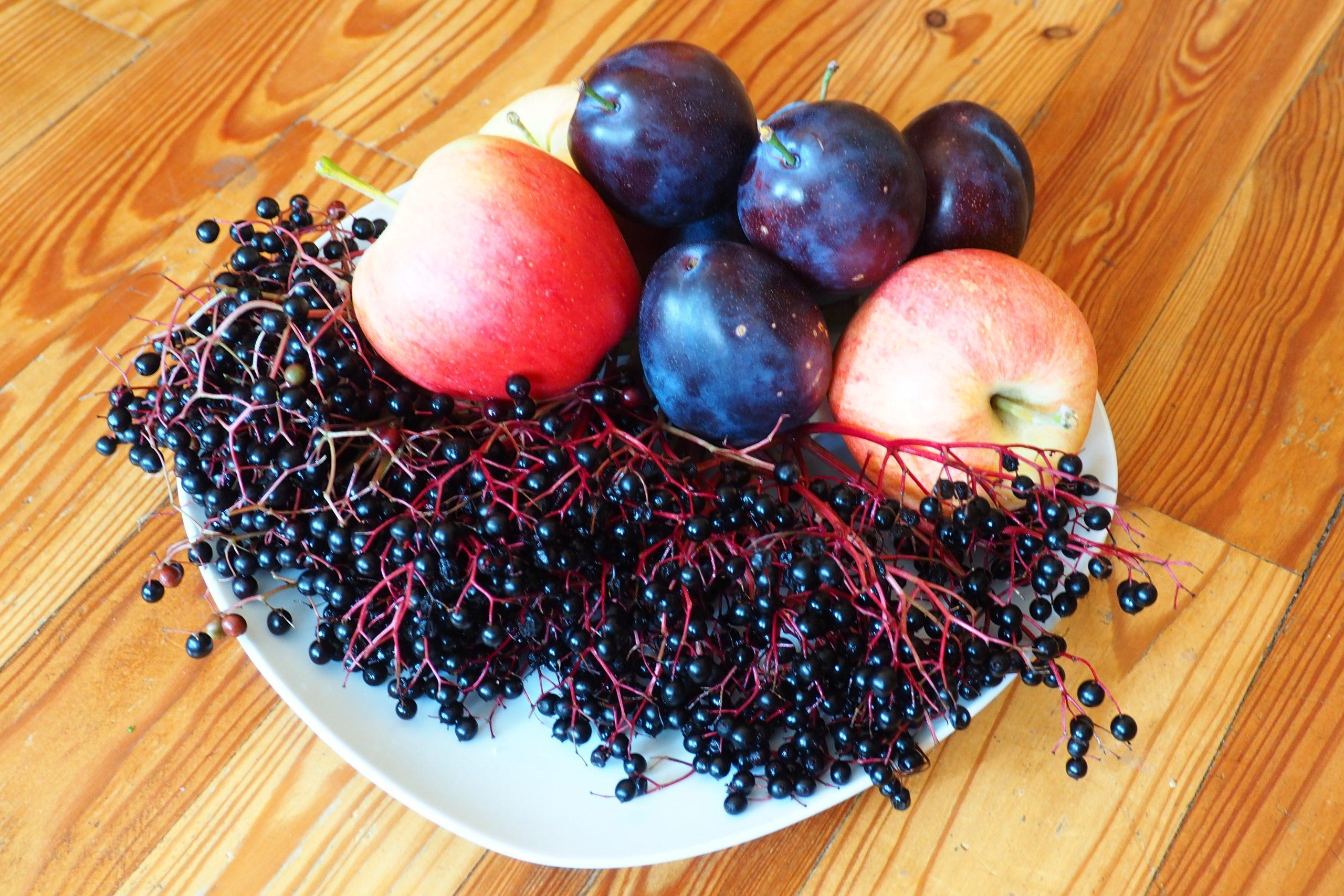 Hollerkoch mit Zwetschken und Äpfel – Gastbeitrag bei essenbelebt
